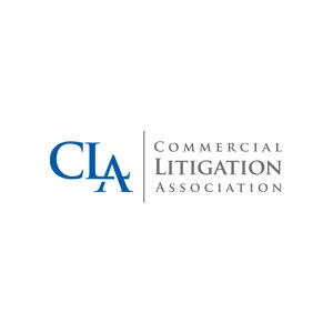 litigation-association-logo